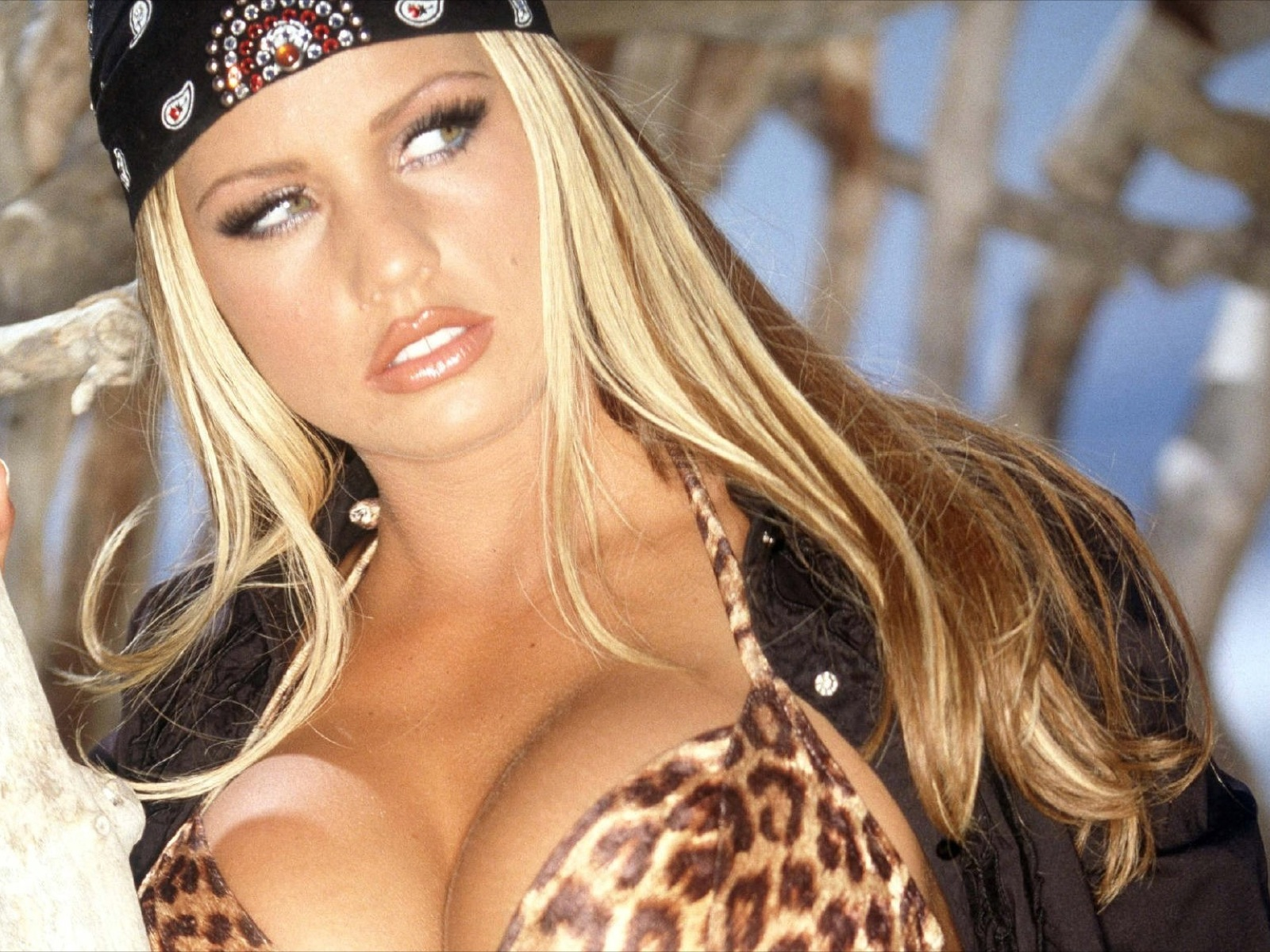 Katie_Price_0062_1600x1200_Wallpaper