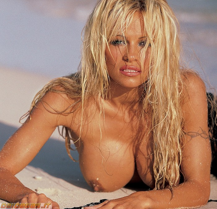 Everything, pamala anderson porno pic have advised