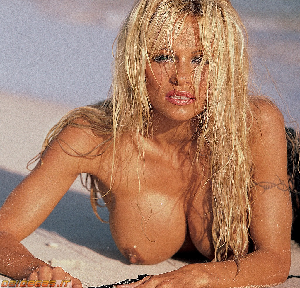 Was specially Pamela anderson lee nude same