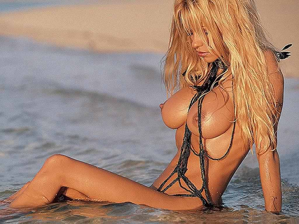 pamela-anderson-sucking-dick