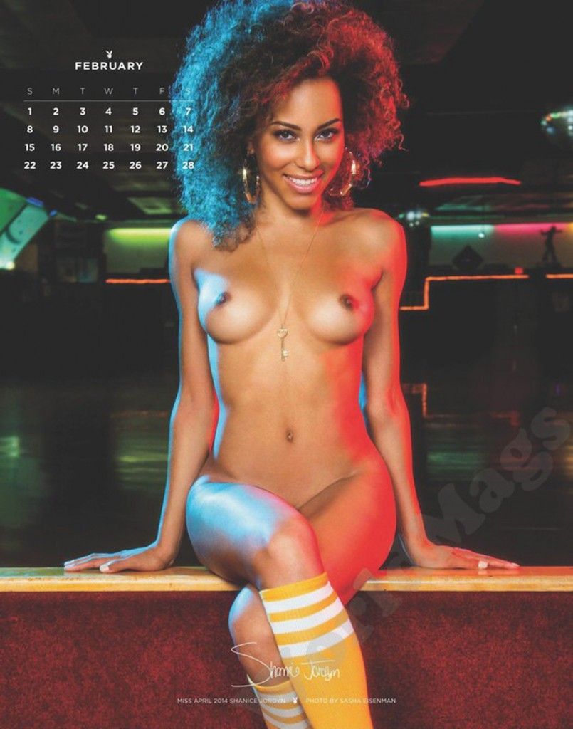 2.mini-Playboy_Playmate_Calendar_2015